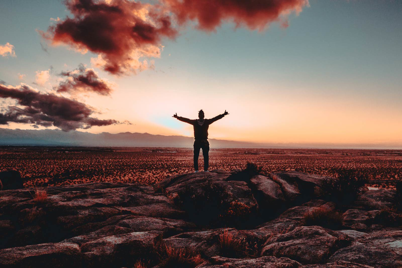 Person with arms stretched looking out at red field with red clouds.