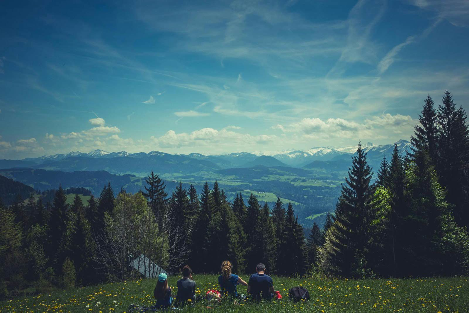 Four people sitting in field near trees looking at mountain view.