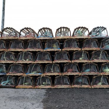 Rows of lobster traps piled on top of each other